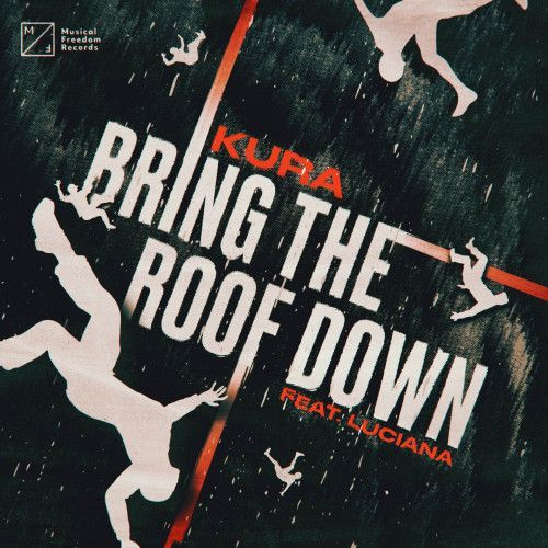 Bring The Roof Down (feat. Luciana)