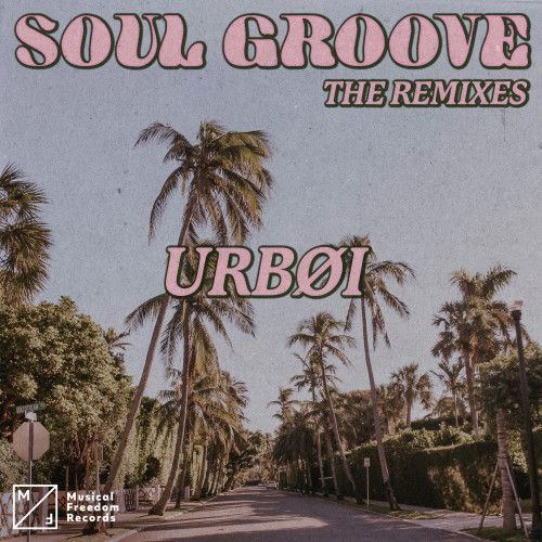 Soul Groove (The Remixes)