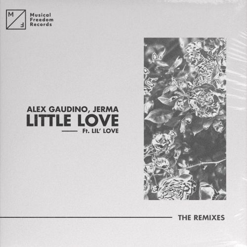 Little Love (pres. Lil Love) (The Remixes)
